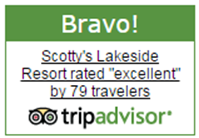 Trip Advisor Rating